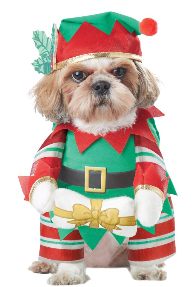 20132-Elf-Pup-Dog-Costume-large.jpg